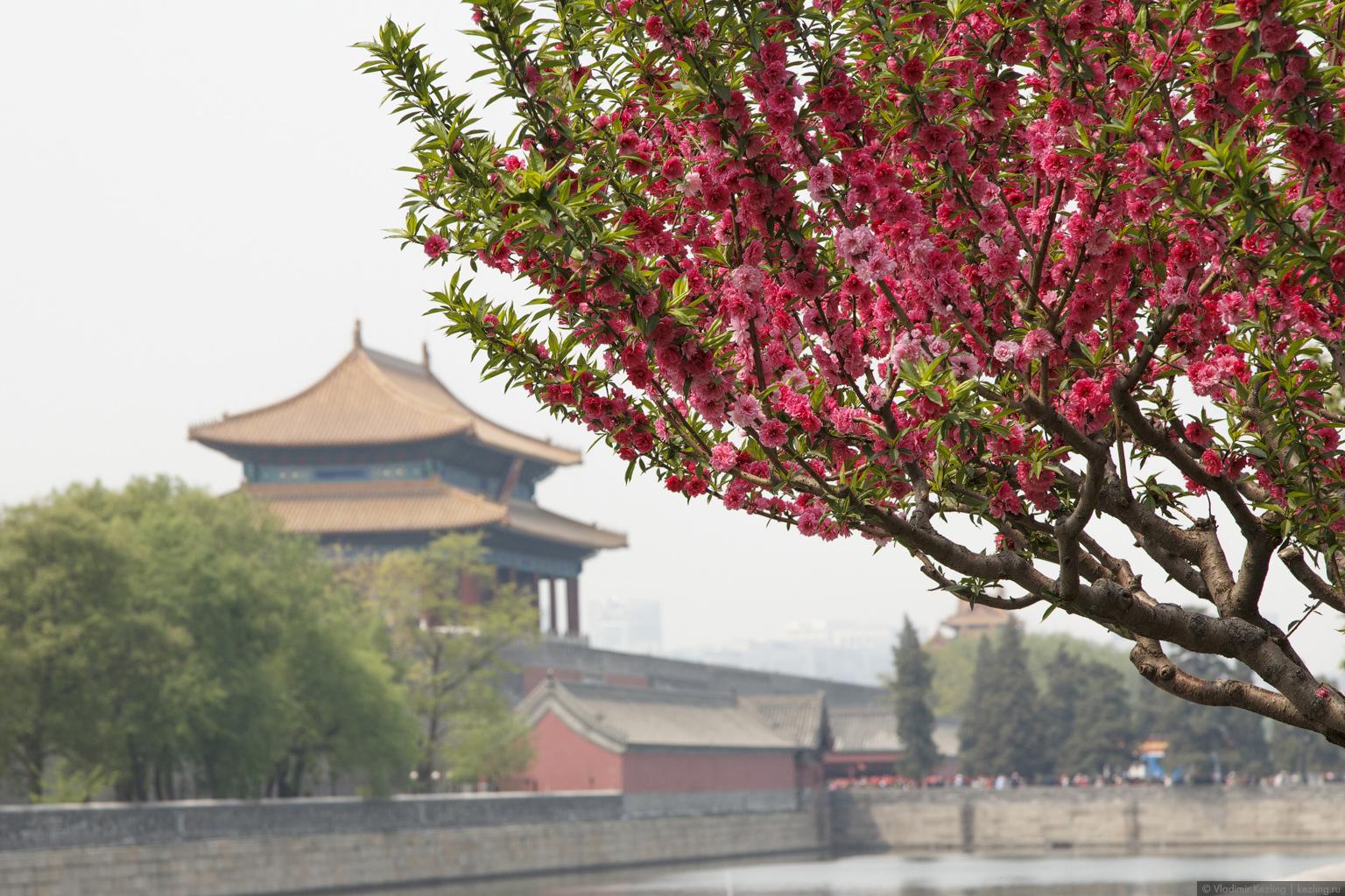 Китай. Пекин — северная столица