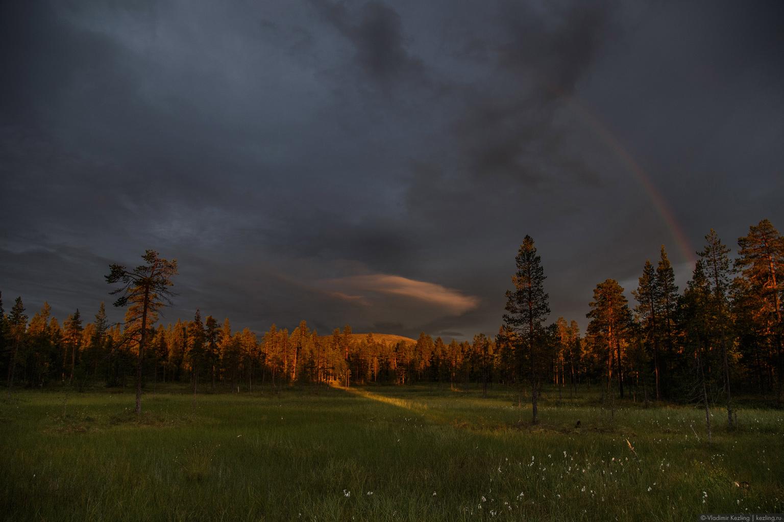 Направление: север. Финская Лапландия. Вид за окном: лапландские сопки