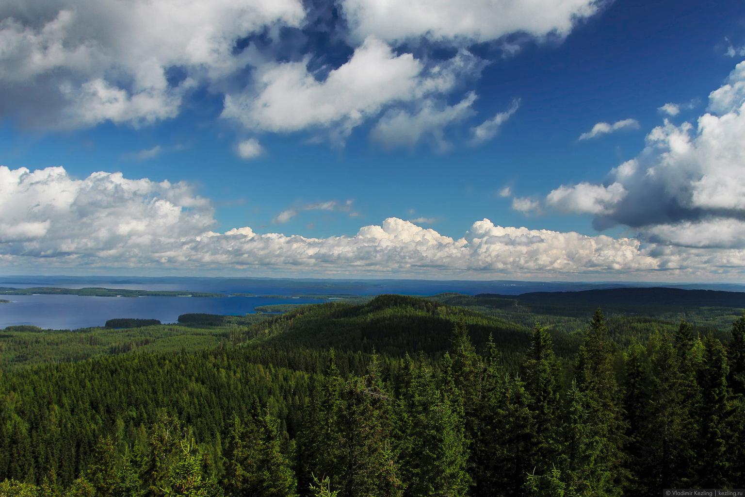 Финские летние сны. Национальный парк «Коли» или Лучший вид Финляндии