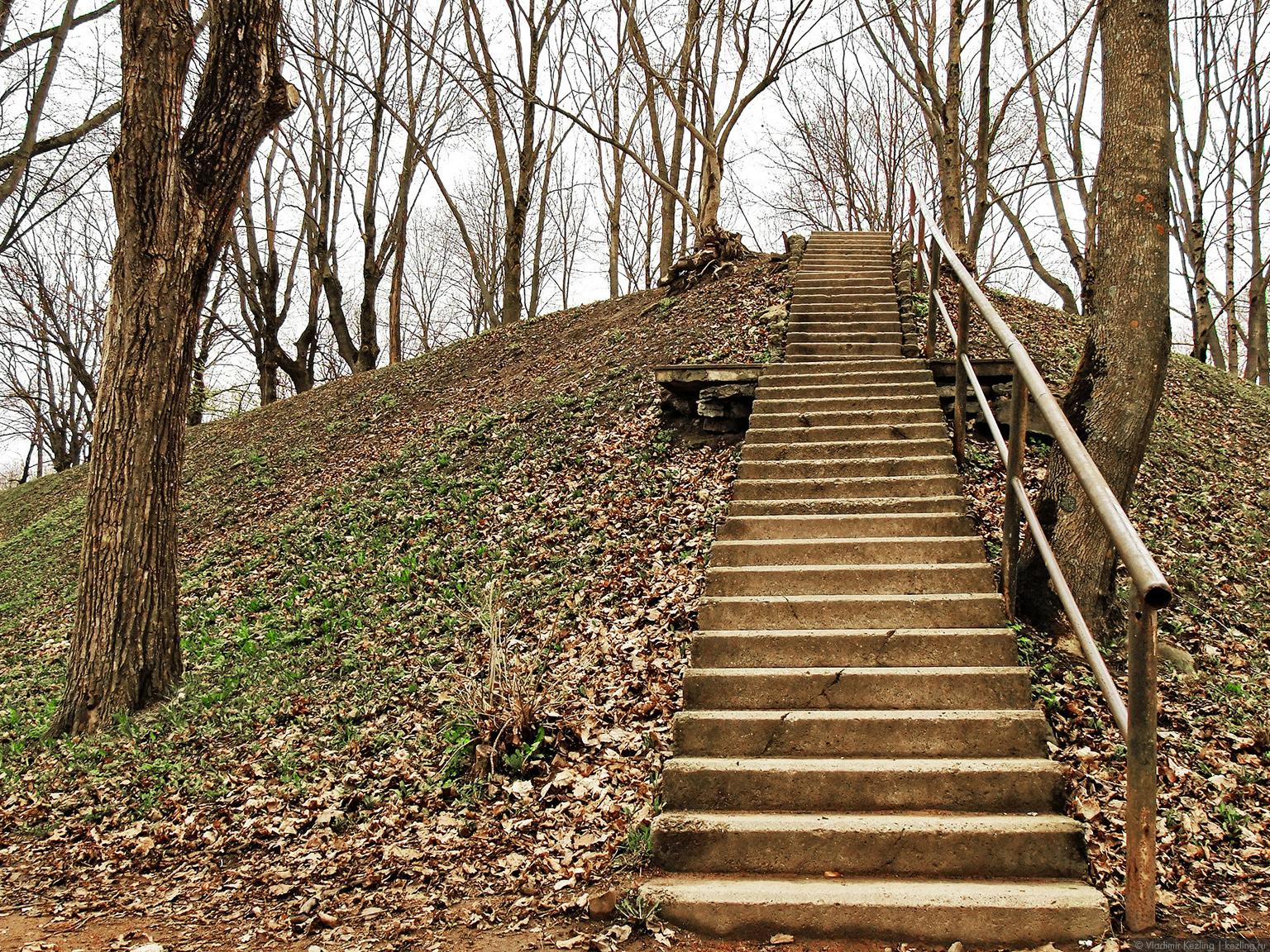 Лестница в Тёмном саду