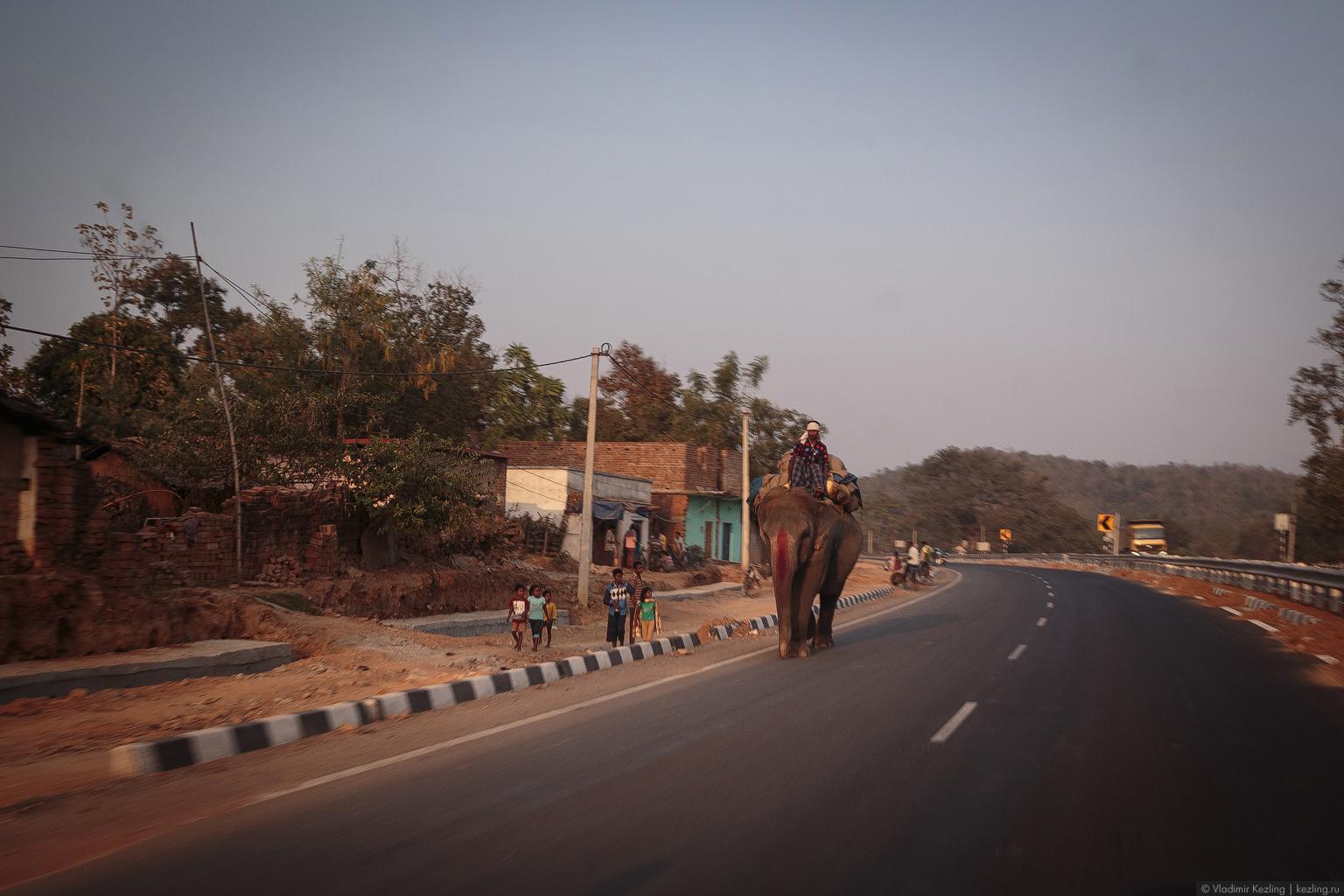 #IRFMR. Индийский этап. День 1. «The road began in Bhilai»: старт автопробега и дорога до Ранчи