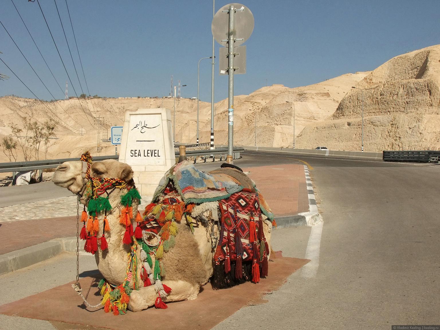 По дороге на Мёртвое море