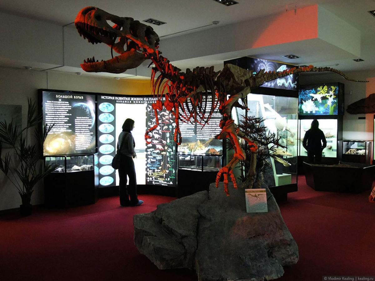 Вятский палеонтологический музей или Прогулки с парейазаврами