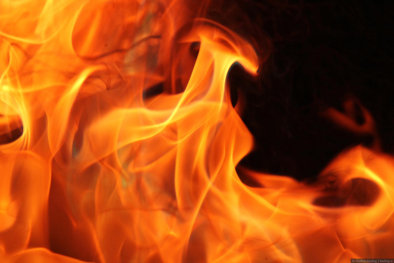Ягодно-огненный пост