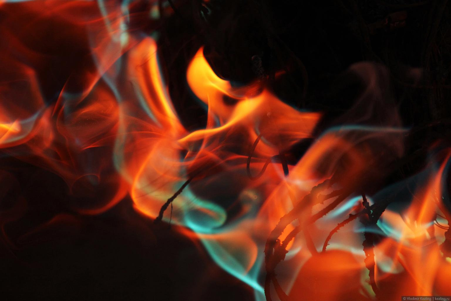 Природоведение. Часть 5: Ягодно-огненный пост