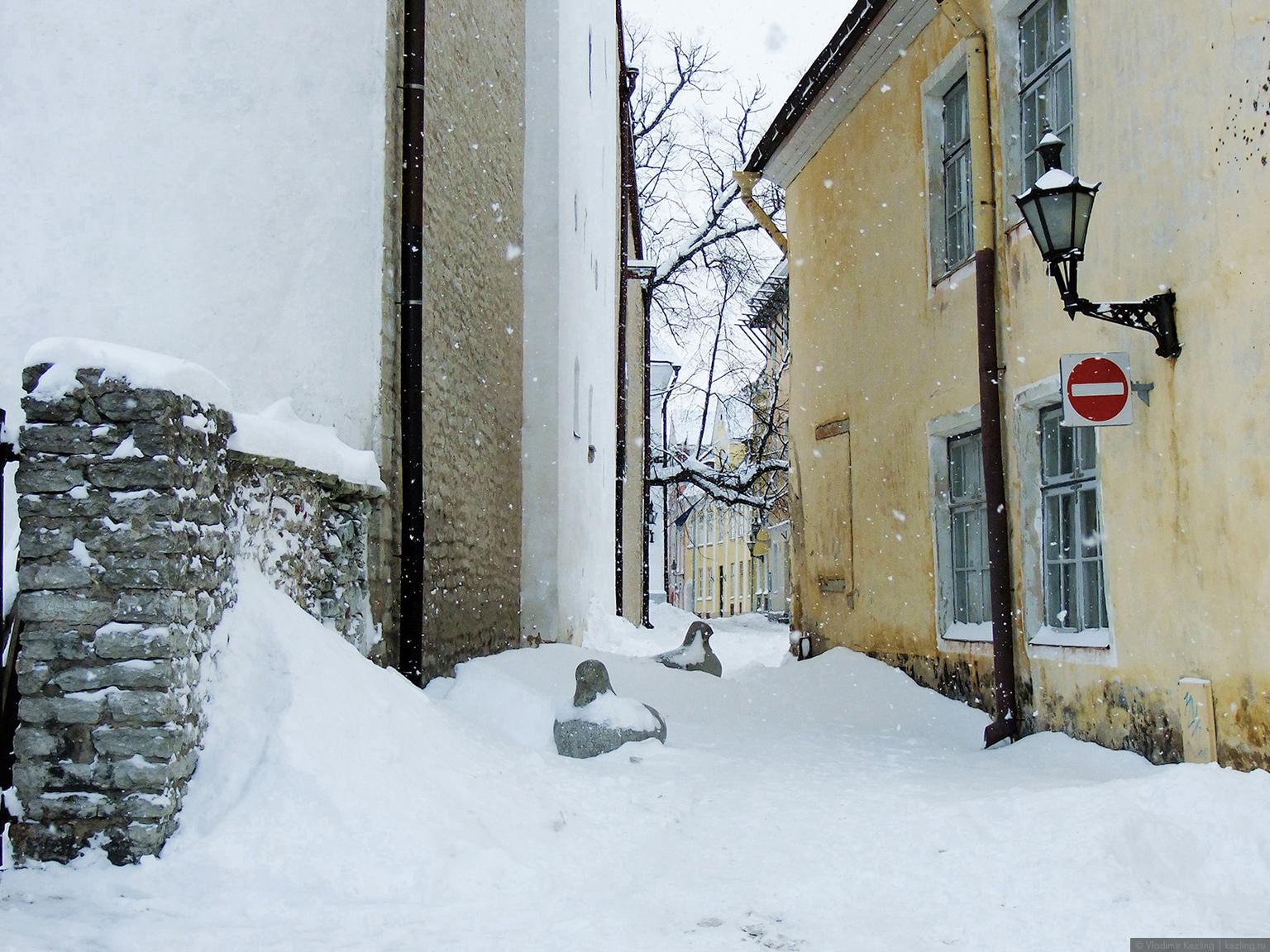 Новогодняя повесть. Старый город Таллина: Вышгород