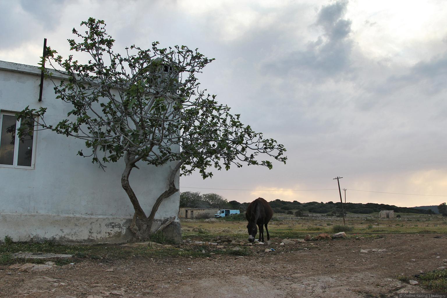 Остров Кипр. Северный Кипр. Монастырь апостола Андрея