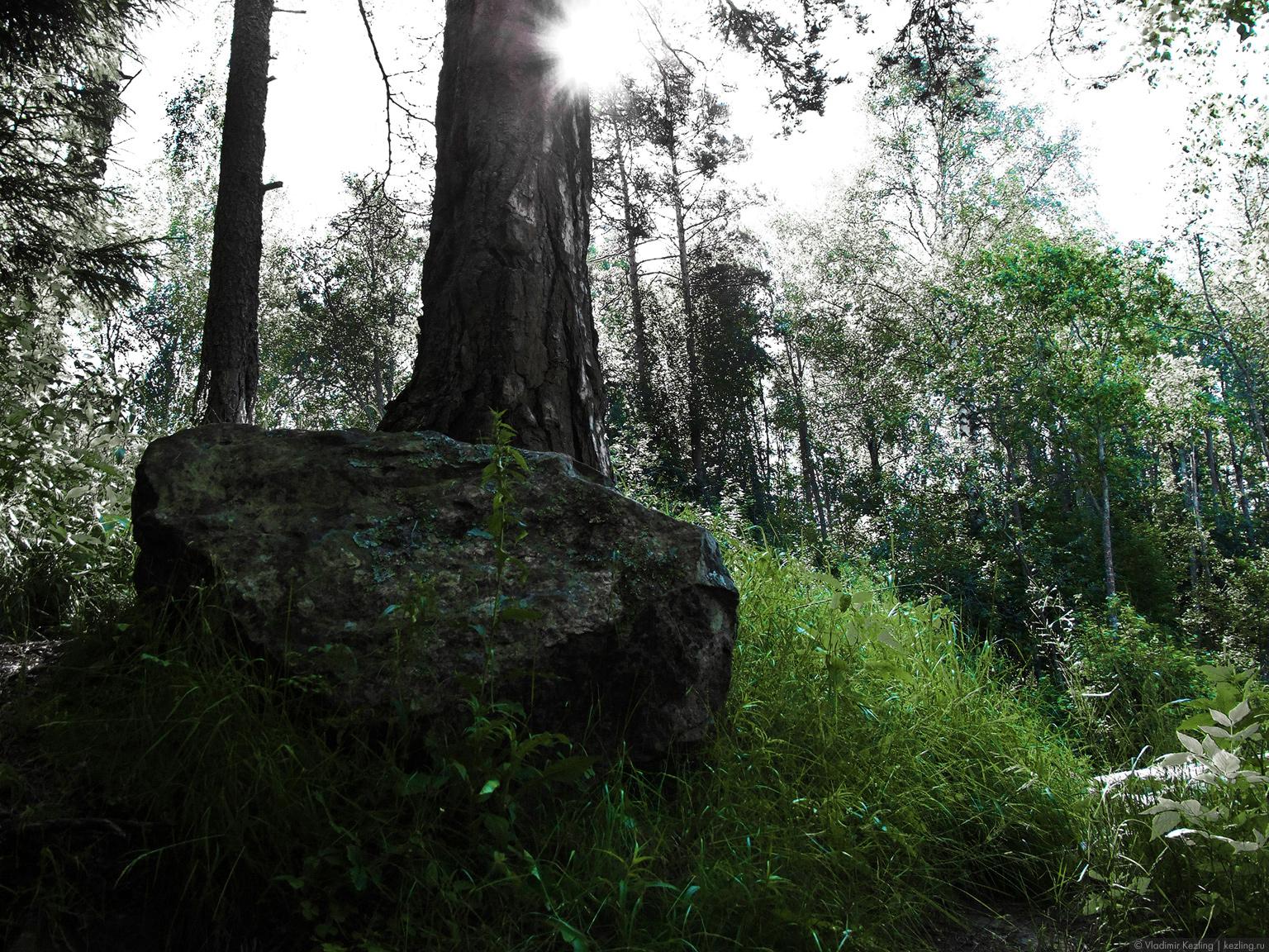 Природа Карелии
