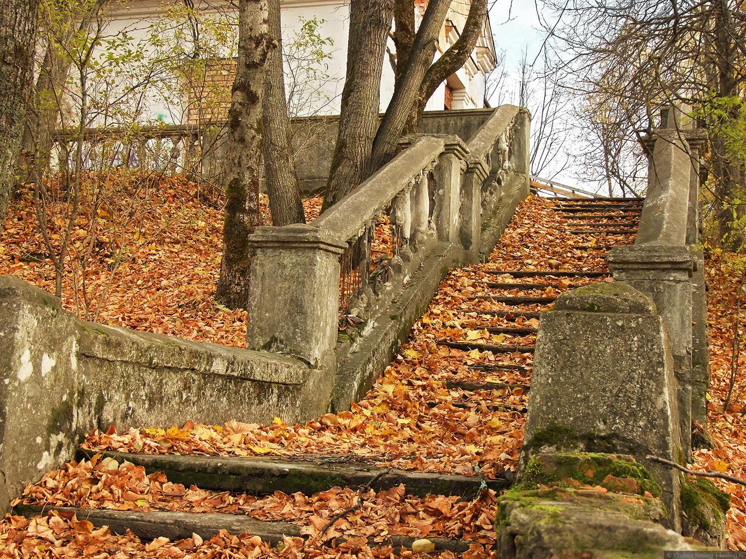 осень в пушкинских горах фото