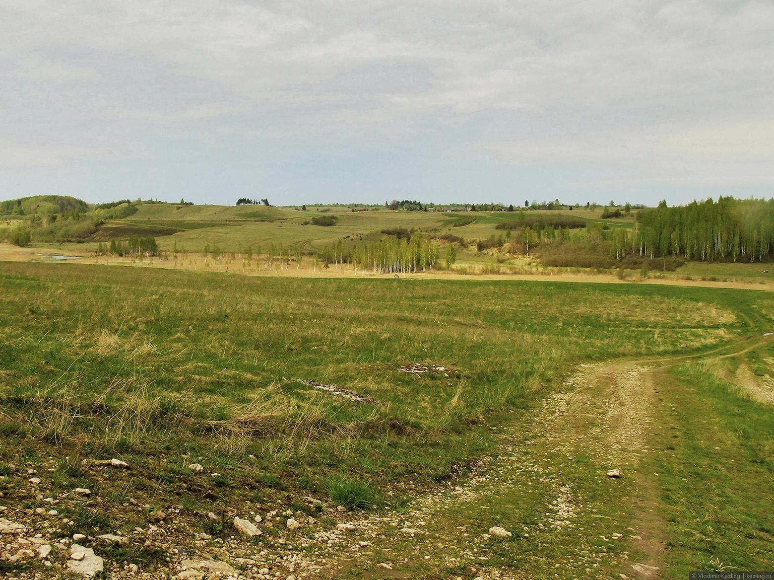 Псковские поля