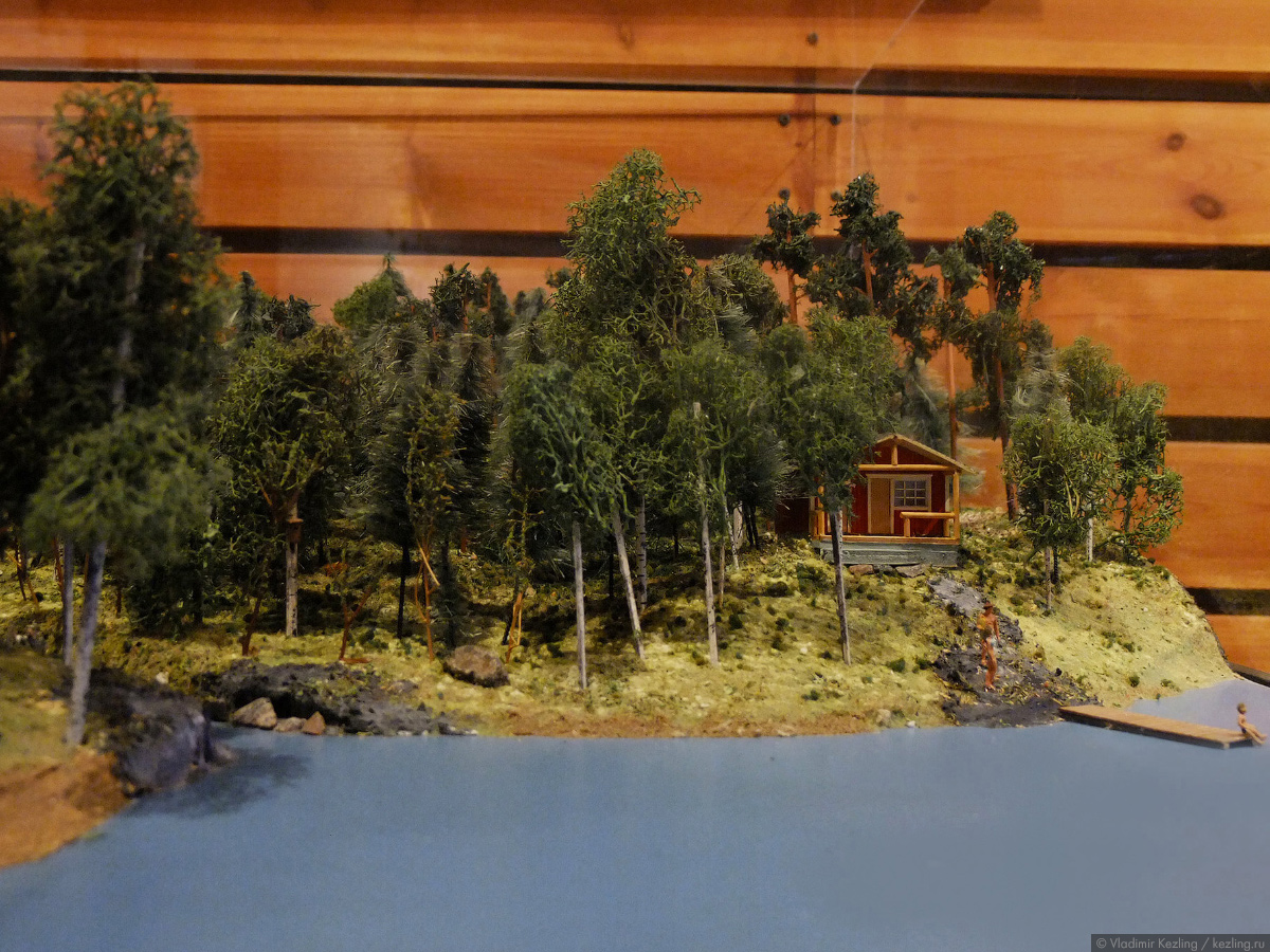Музей леса