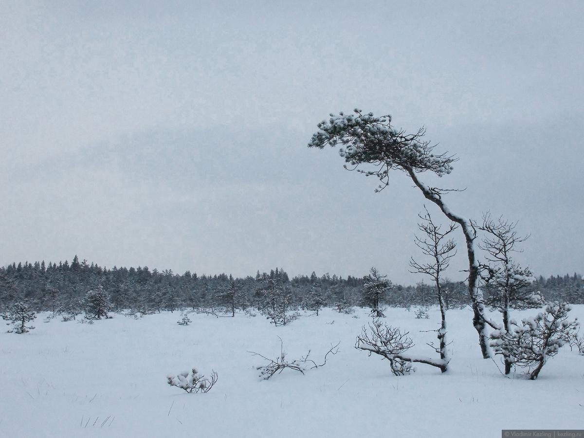 Финские уикенды — 2. Национальный парк «Валкмуса»