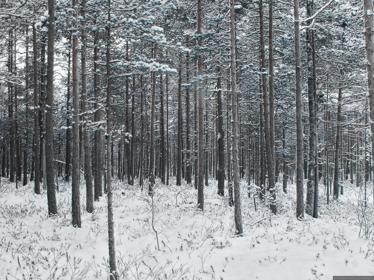 Национальный парк Валкмуса