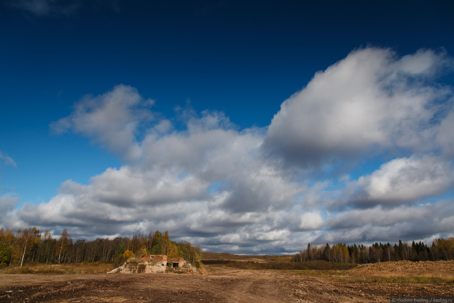 Сказки вепсского леса